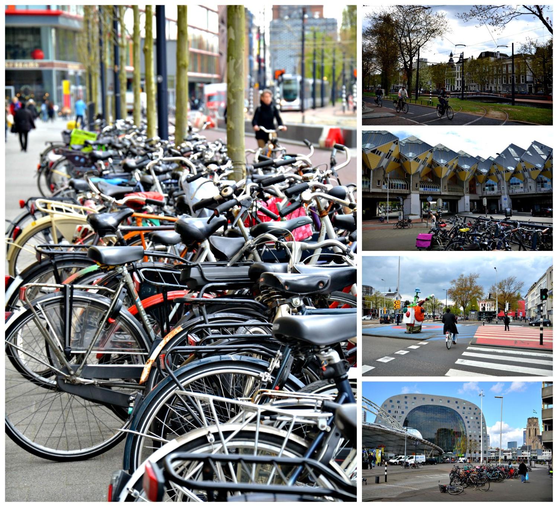 Rotterdam, Kinderdijk, Holandia - bele kaj, blog podróżniczy po śląsku