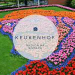 Keukenhof, Holandia, bele kaj, blog po śląsku