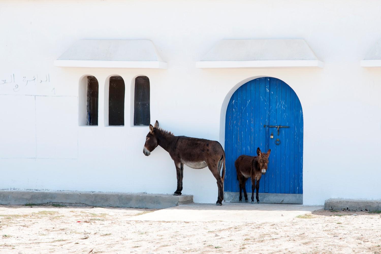Maroko, od A do Z, blog po śląsku, bele kaj