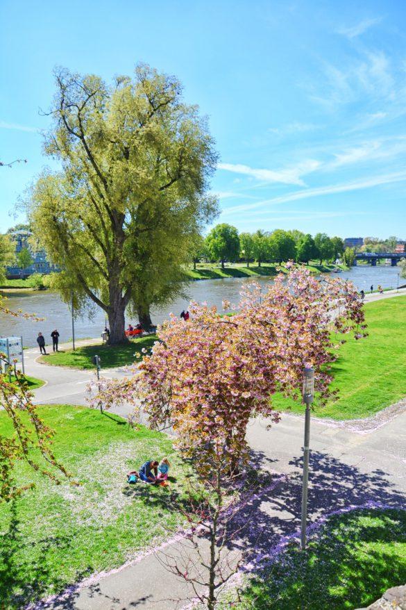 Ulm, Niemcy - bele kaj, blog podróżniczy po śląsku