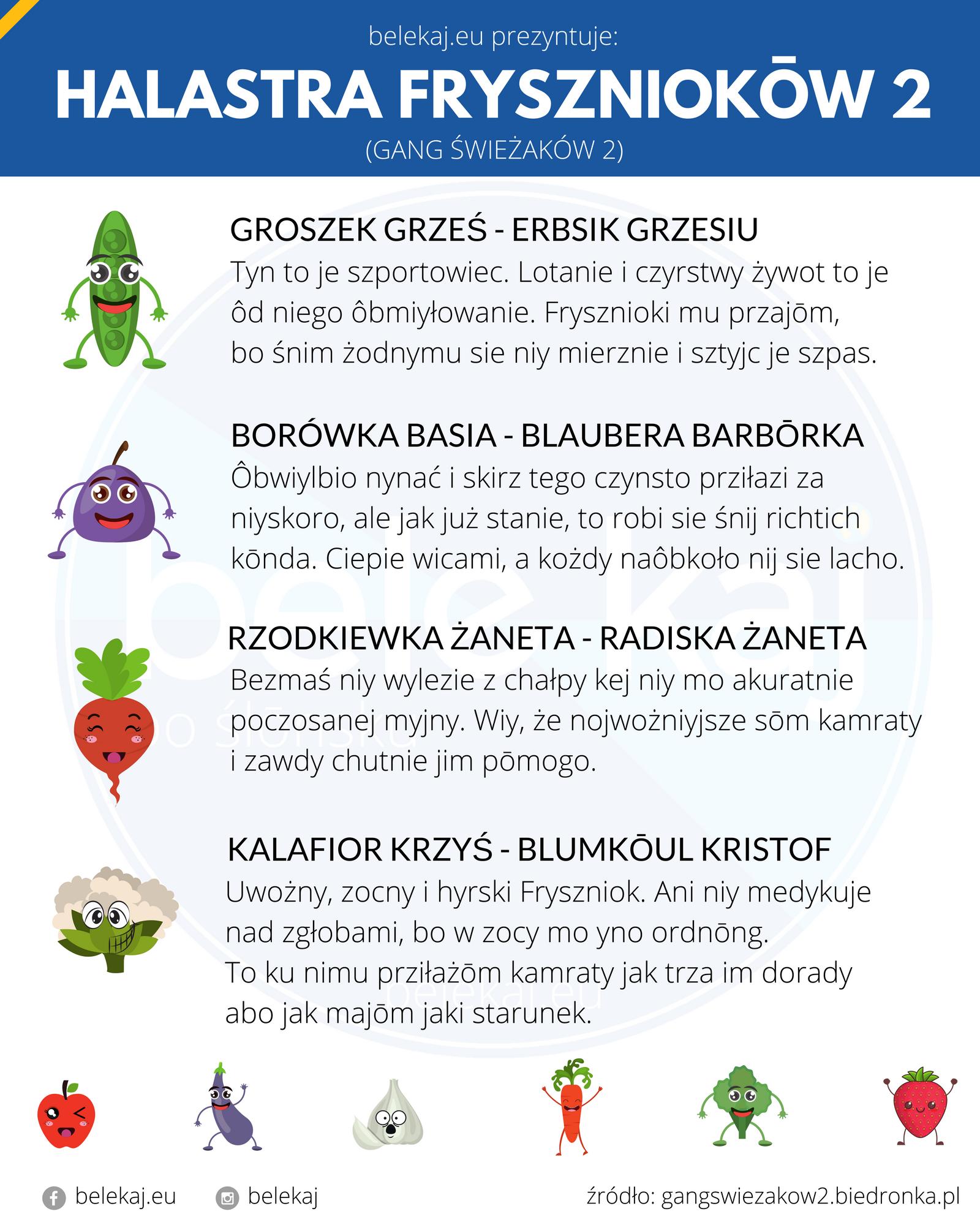 Halastra Fryszniokōw - Gang Świeżaków po śląsku