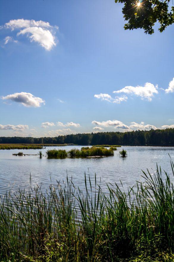 Pojezierze Palowickie, Palowice, Śląsk - bele kaj, blog podróżniczy po śląsku