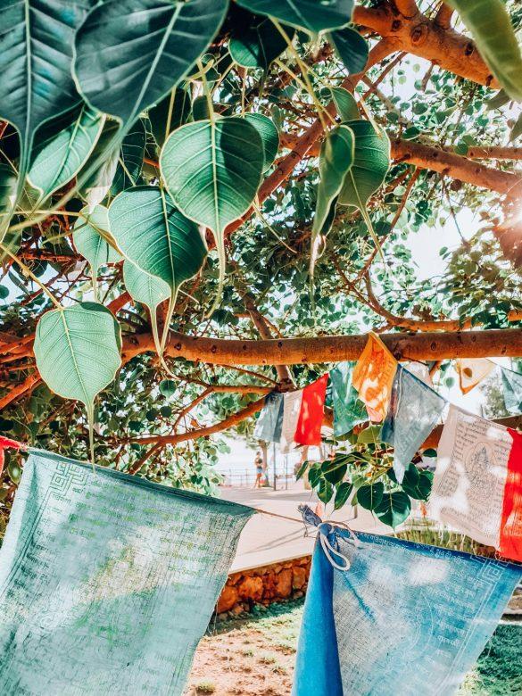 Benalmadena, Andaluzja, Hiszpania - bele kaj, blog podróżniczy po śląsku