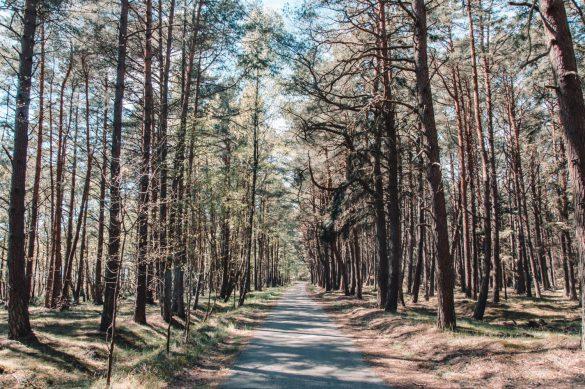 Słowiński Park Narodowy, Polska - bele kaj - blog podróżniczy