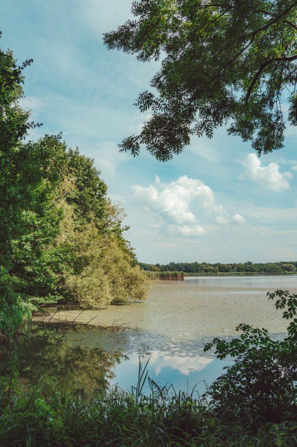 Rezerwat Łężczok, Śląsk - blog podróżniczy bele kaj